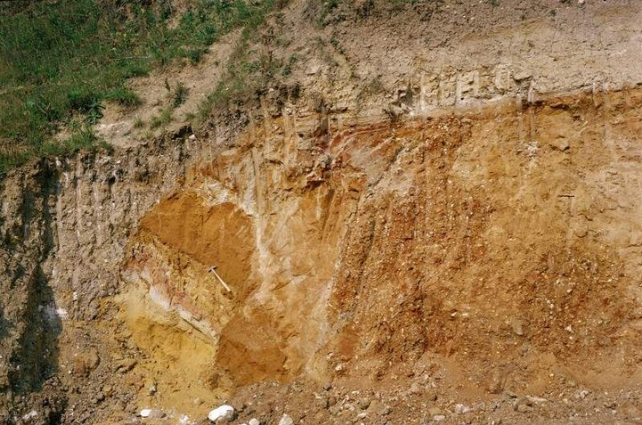 Great Sampford Howe Lane Pit (W side of N face) in 1980 Copyright: British Geological Survey (P212626)
