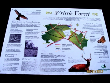 Writtle Forest Noticeboard Copyright: Graham Smith
