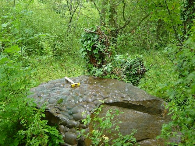Sarsen stone on the rim of Grays Chalk Pit in 2005 Copyright: Di Clements
