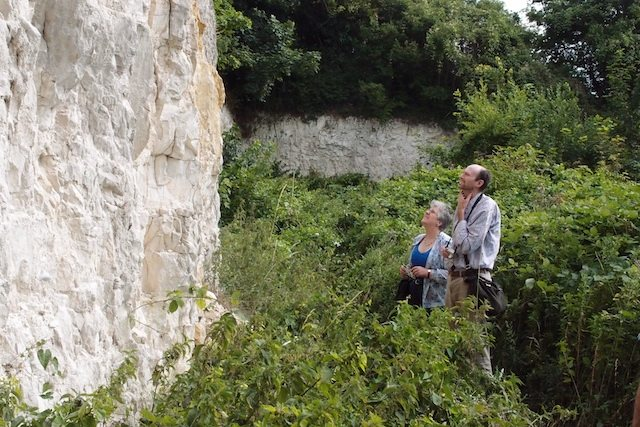 Examining the chalk cliff at Limefields Pit Nature Reserve Copyright: Gerald Lucy
