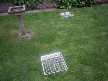 Redundant fridge drawers used as garden bird feeders Copyright: Michael Daniels