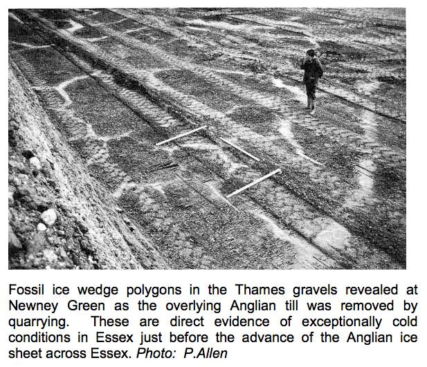 Newney Green Pit ice wedge polygons Copyright: