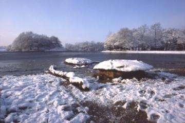 Wanstead Flats in snow