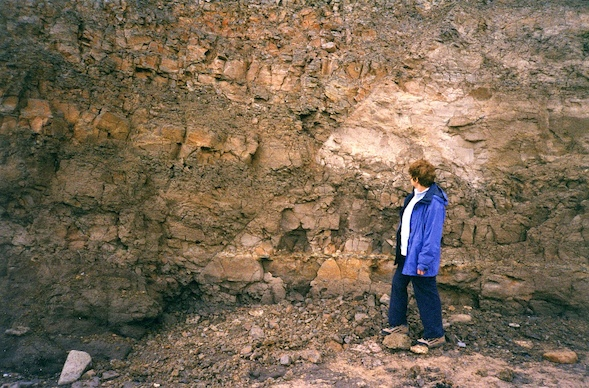 Fault in the London Clay in the Naze cliffs. Copyright: Gerald Lucy