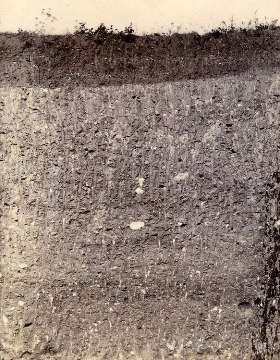 Shire Hill boulder clay pit in 1911 Copyright: Geologists Association
