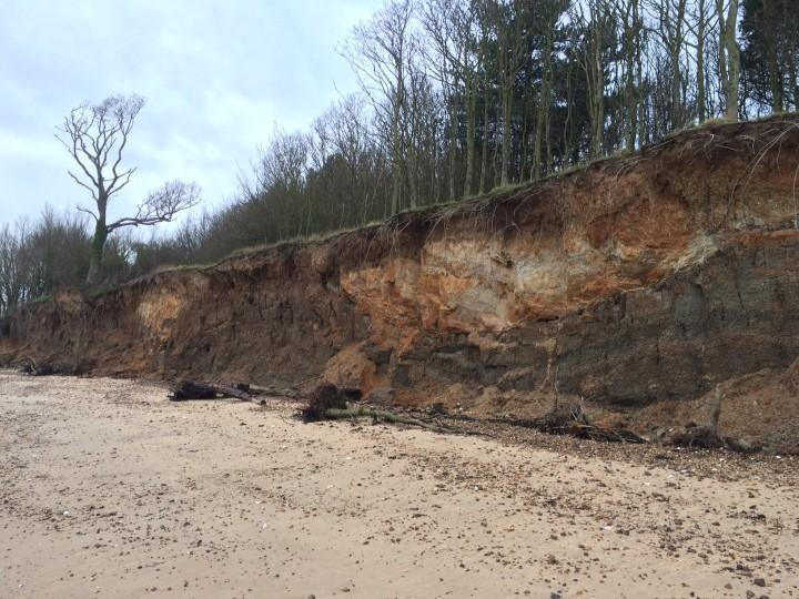 Cudmore Grove Cliffs - fresh erosion Copyright: Lucy Heath