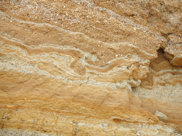 Involutions in the sediments at the top of the Naze cliffs. Copyright: Gerald Lucy