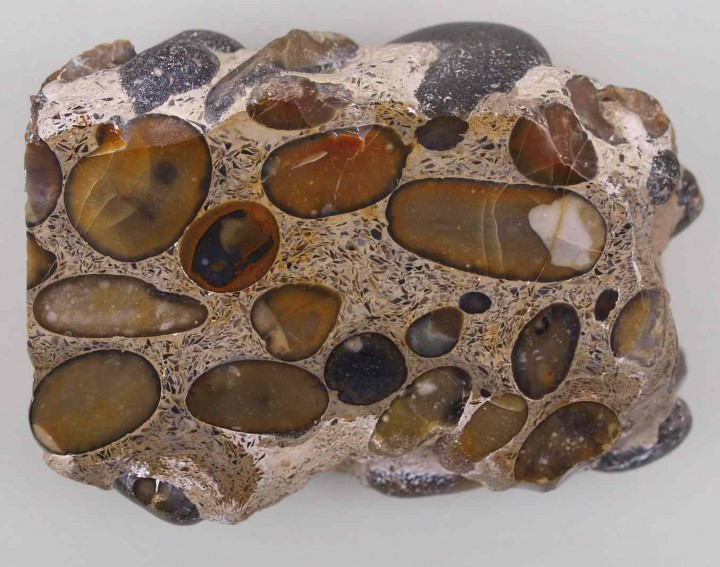 Hertfordshire puddingstone from Newney Green found by B.E.Brett Copyright: Gerald Lucy