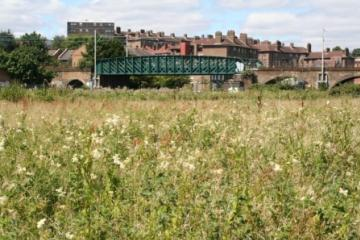 Walthamstow Marshes view Copyright: P.R. Harvey