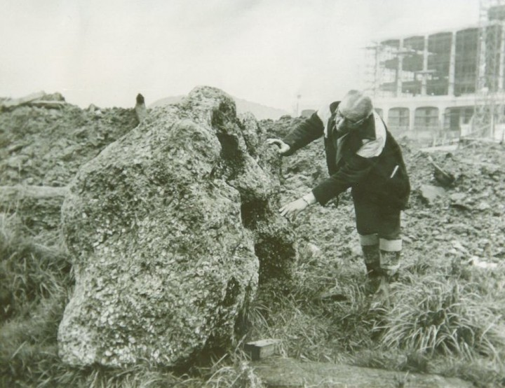 The Harlow Puddingstone as found in 1966. Copyright: Courtesy of BP. Used with permission.