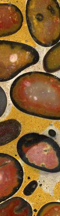 Polished puddingstone from Stanway Copyright: unknown