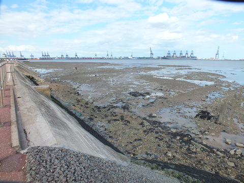 Harwich Shore Copyright: Peter Pearson