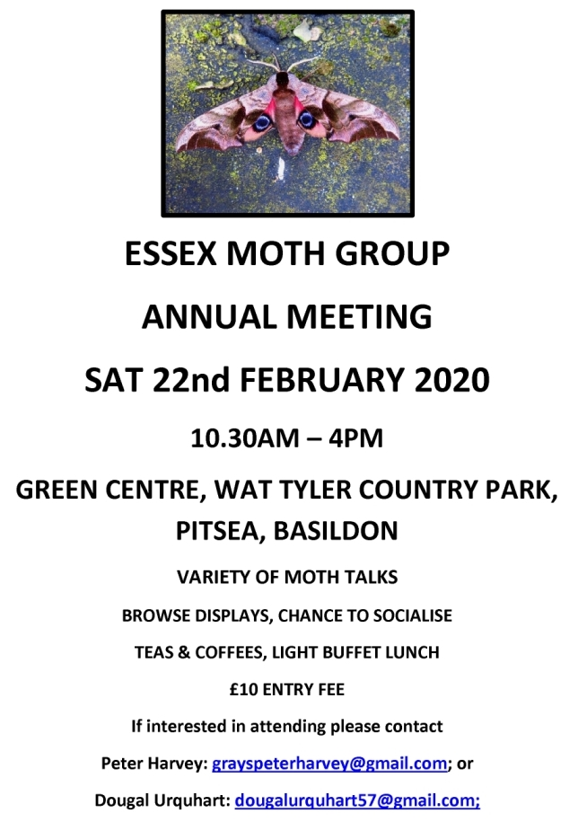 Annual Essex Moth Group Meeting