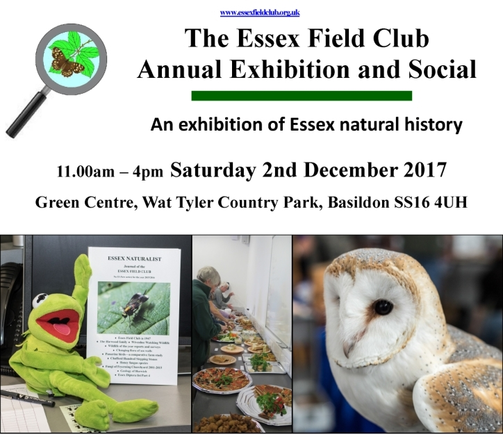 Annual Exhibition and Social