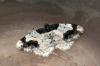Scorched Carpet 2 Copyright: Ben Sale