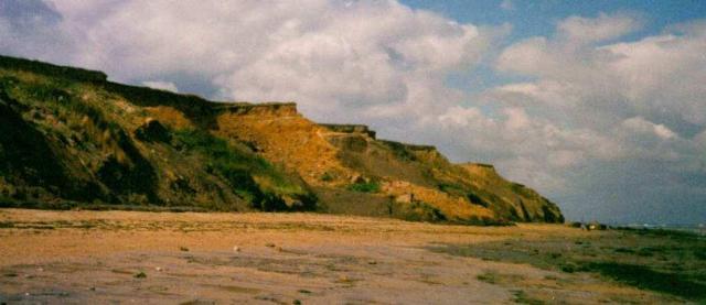 Naze cliffs Copyright: unknown
