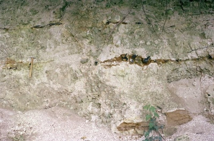 Pinchpools Chalk Pit in 1980 Copyright: Photo © British Geological Survey (P212605).