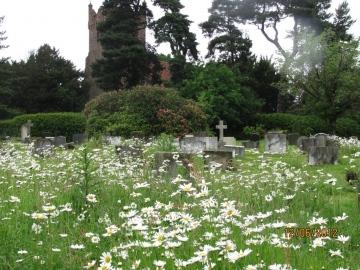 Fryerning Churchyard June 2012 Copyright: Graham Smith